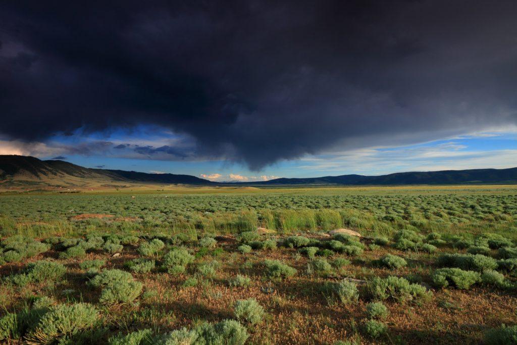 AMERICAN LIBERTY MORTGAGE Northern Colorado & Wyoming